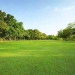 7 EASY STEPS TO ACQUIRE LAND SAFELY IN GHANA