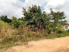 Registered Factory Plot of Land For Sale